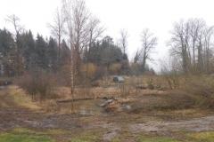 Hasenholz 18_24