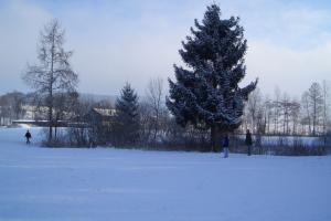 2006.02.16 Holzertag Platten